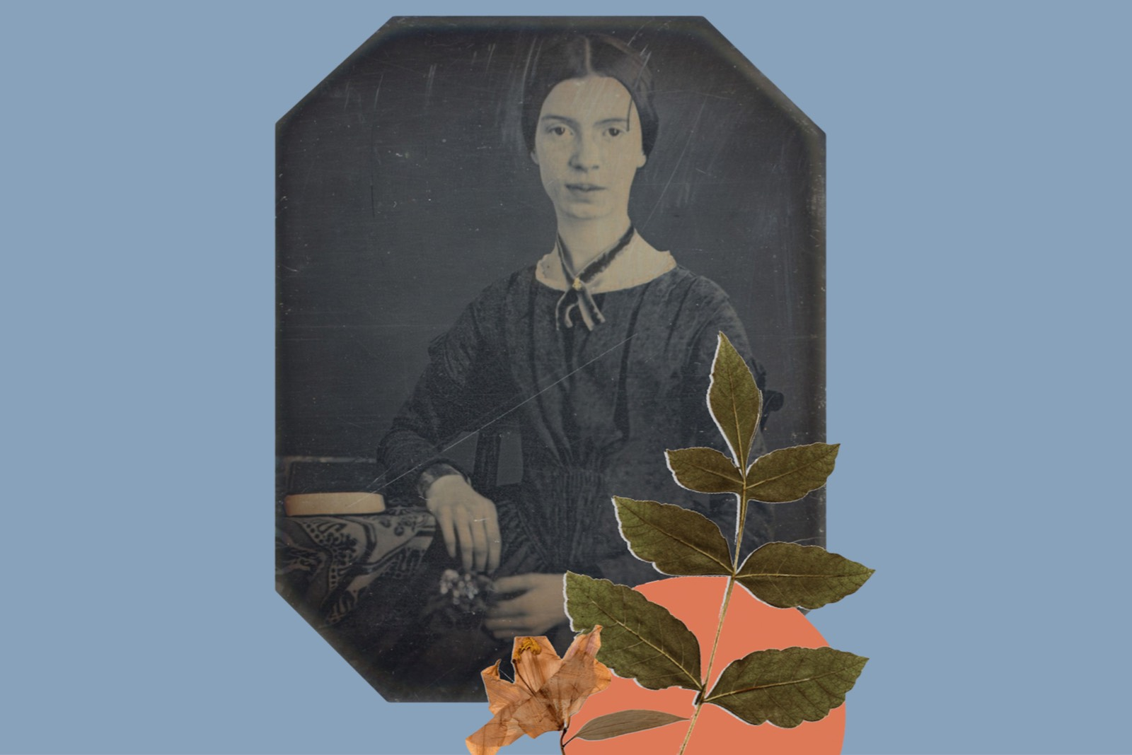 L'erbario di Emily Dickinson